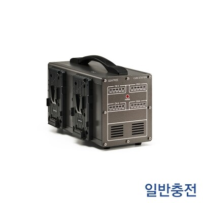GEN ENERGY 1ch D-Tap Charger